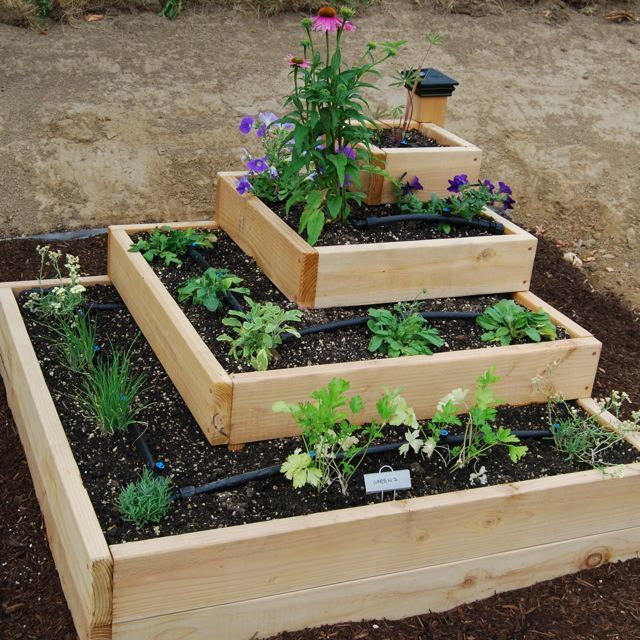 Garden Idea – The CWU Campus Community Garden